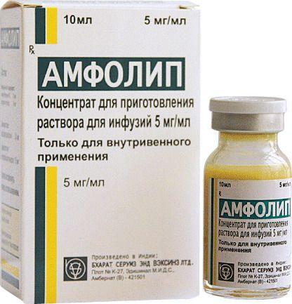 Амфолип, конц. д/р-ра д/инф. 5 мг/мл фл 10мл и 20мл
